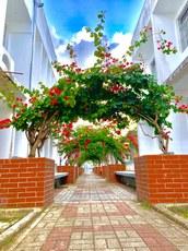 Área de vivências da Escola Técnica de Saúde, no campus I, em João Pessoa. Crédito: Aline Paiva